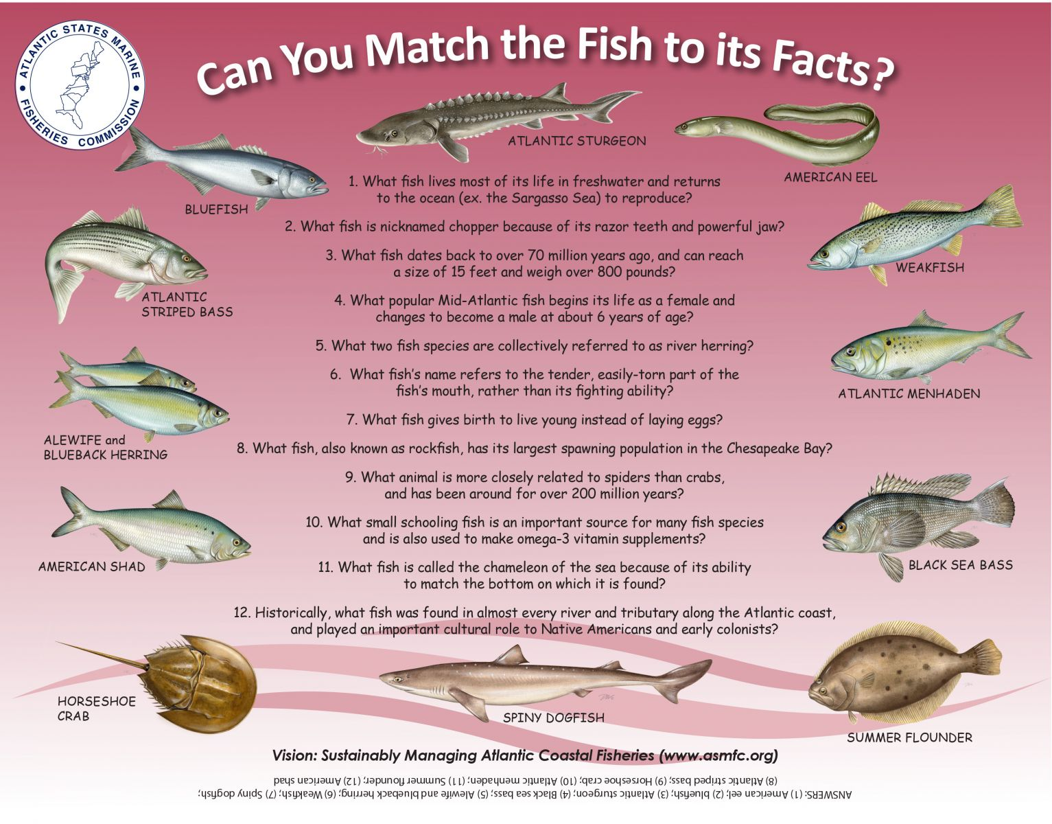 Interesting facts about fish eggs all the best fish in 2018 for Freshwater fish facts